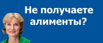 взыскание алиментов в СПб